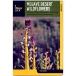 Mojave Desert Wildflowers - Globe