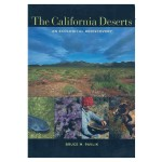 The California Deserts