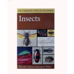 Peterson Field Guides: Insects
