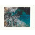 Crystal Springs Note Card