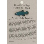 Devil's Hole Pupfish Pin