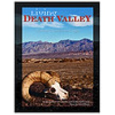 Living Death Valley: A journey of music and image