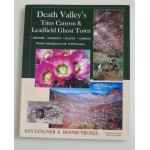 Death Valley's Titus Canyon & Leadfield Ghost Town