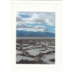 Badwater Salt Note Cards
