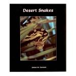 Desert Snakes