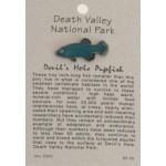 Devil's Hole Pupfish Pin