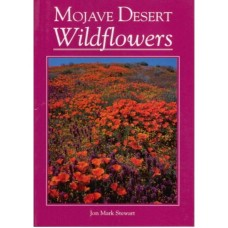 Mojave Desert Wildflowers